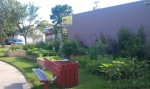 Moj community garden